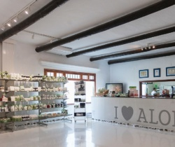 Aloe Plus Lanzarote tienda