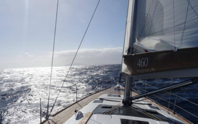 Lava-Charter-4