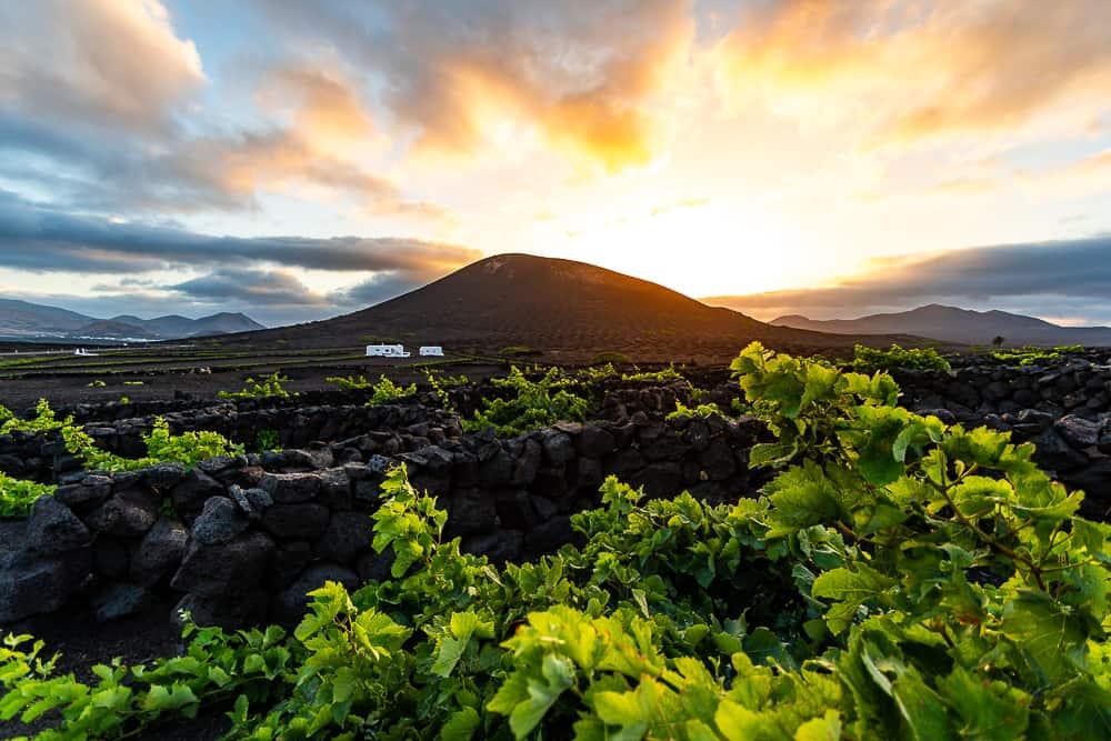 Atardecer en La Geria Turismo Lanzarote