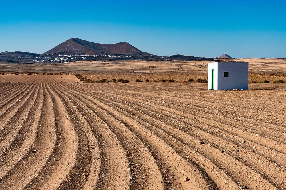 Arado de Jable con Montaña Tamia - Turismo Lanzarote