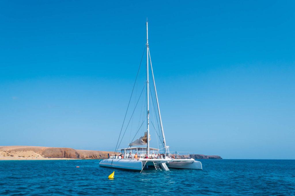 Catlanza papagayo - Turismo Lanzarote