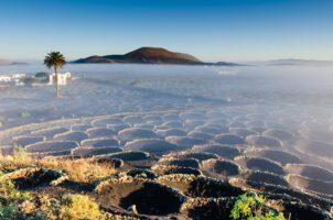 Masdache_© Turismo Lanzarote