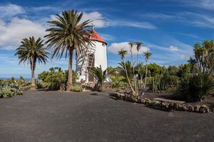 300 x 200 portada molino museo el patio - Tiagua
